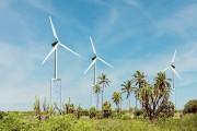 平价上网 风电回归平稳市场