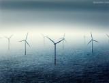 """海上风电业的""""2022关口"""" 风"""